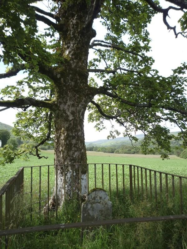 MacNab burial ground, Suie (1)
