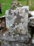 Lichen-covered stone