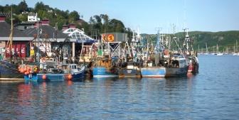 Oban fishing boats
