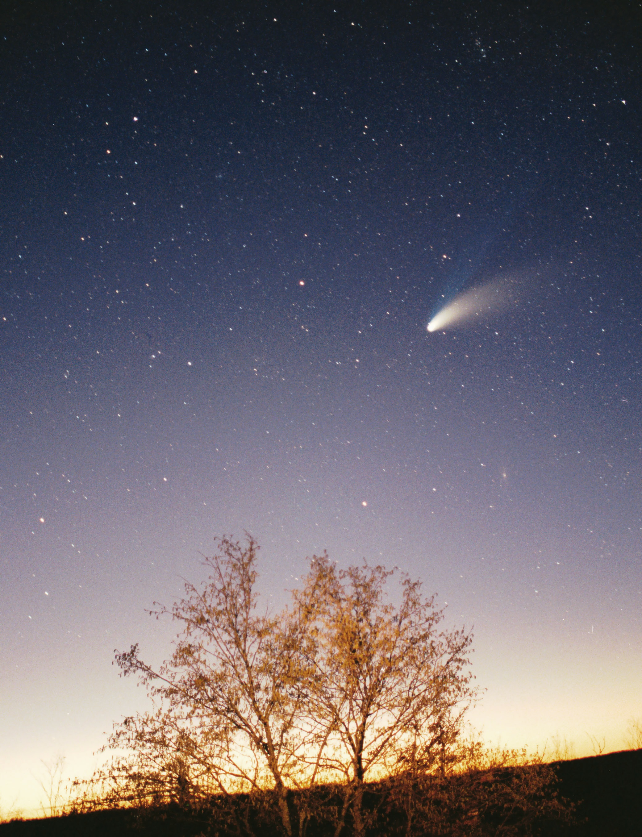 Comet Hale-Bopp over Croatia in March 1997, by Philipp Salzgeber via Wikimedia Commons