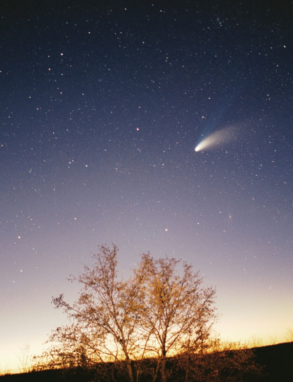 Comet Hale-Bopp over Croatia in March 1997, by Philipp Salzgeber via Wikimedia Commons