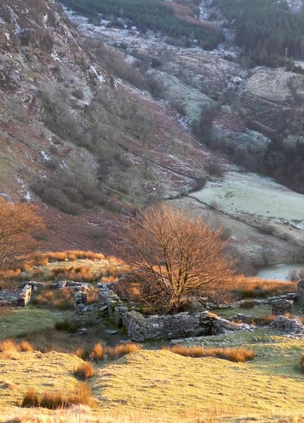 Frost in Cwm Cynfal