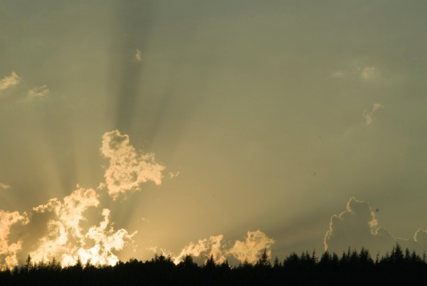 Crepuscular rays (1)