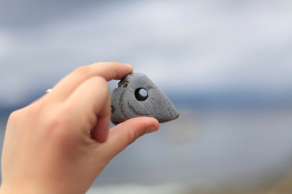 Solving A Beachcombing Mystery