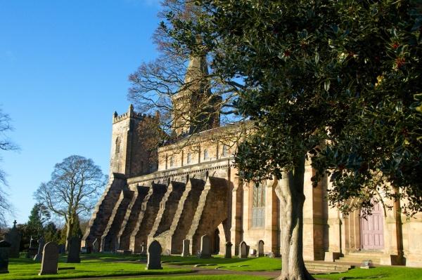 Holly tree outside Dunfermline Abbey Church