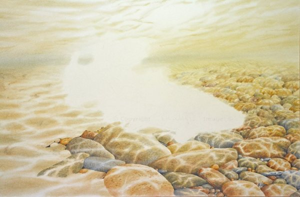 Brown trout - painting by Colin Woolf (1)