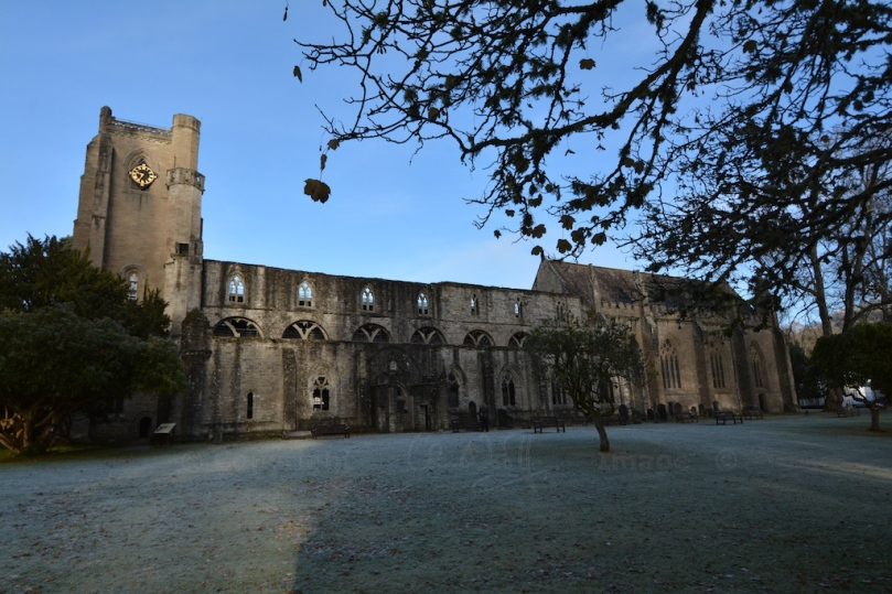 Dunkeld Cathedral 6