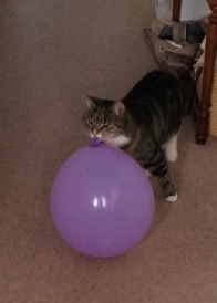 Purdey and balloon (1)