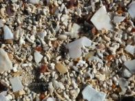 Maerl bleached and dried, mixed with shell fragments