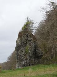 The Dog Stone