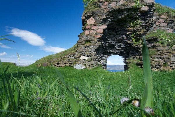 Coeffin Castle (7)