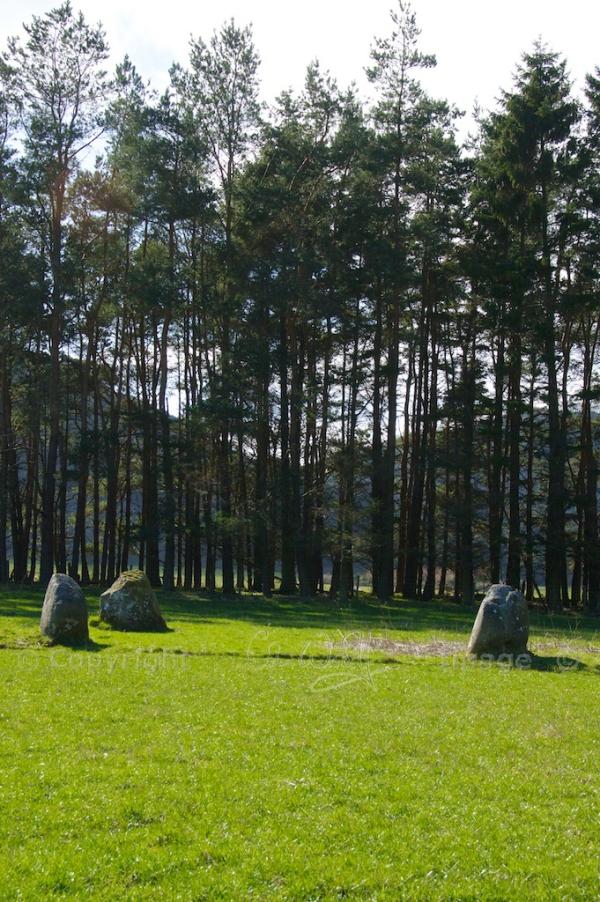 Fortingall stone circle 11