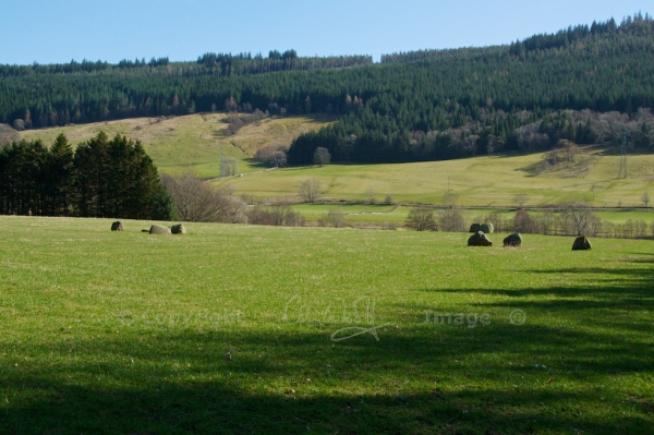 Fortingall stone circle 4