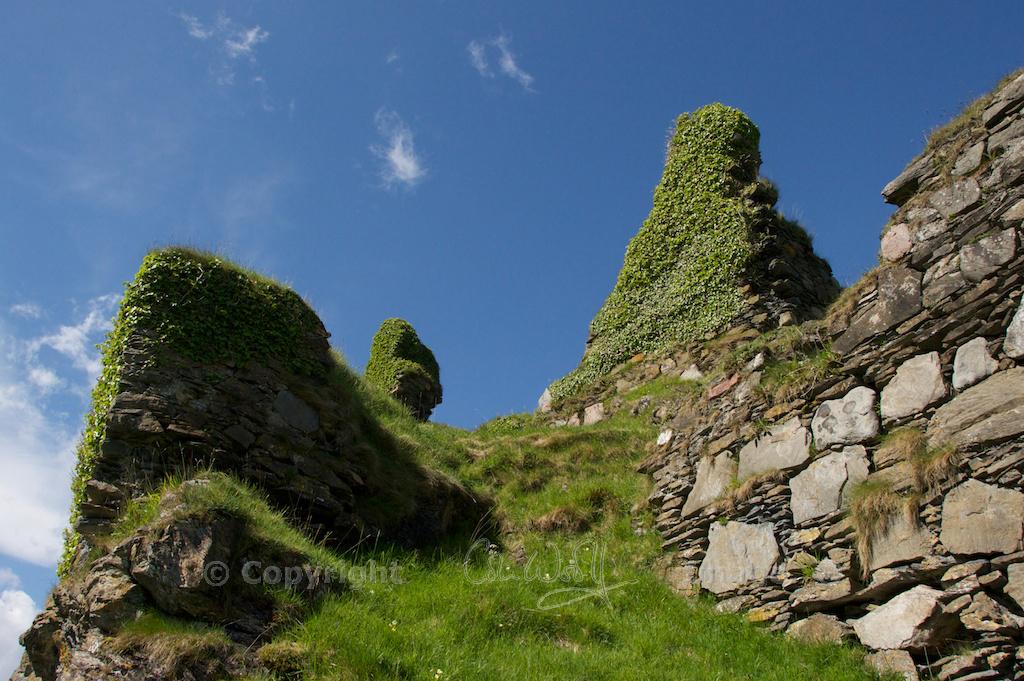 Castle Coeffin (5)