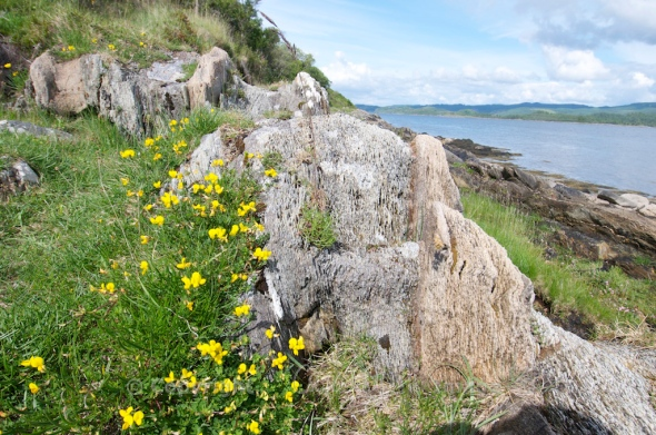 On the shore of Loch Sween