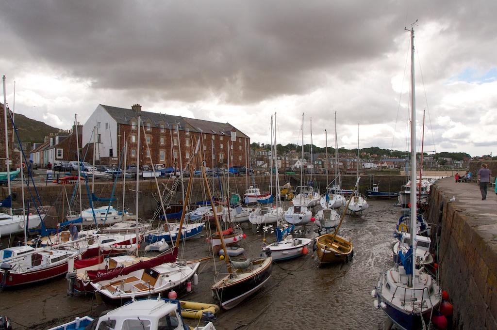 North berwick harbour 25