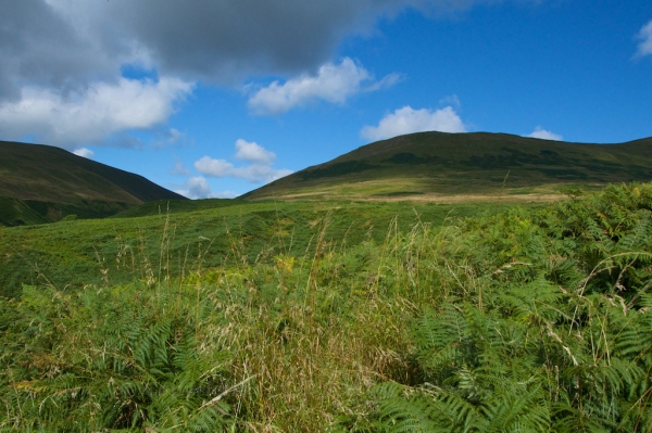 Ochil Hills view