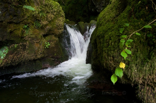 Waterfalls, Dollar Glen 68