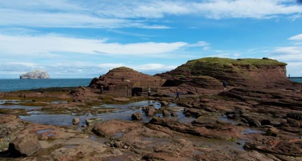 Seacliff harbour (3)