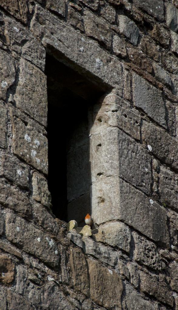 Loch Leven Castle (Jo) 53 (1)