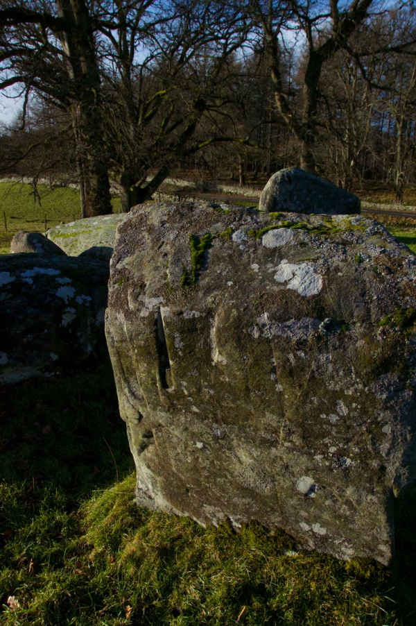 Croft Moraig, stone circle 74