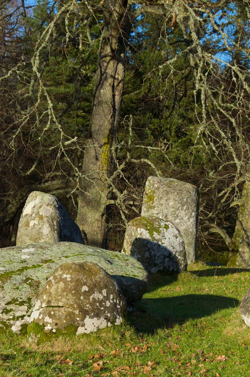Croft Moraig, stone circle 89