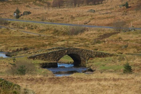 Butter bridge (3)