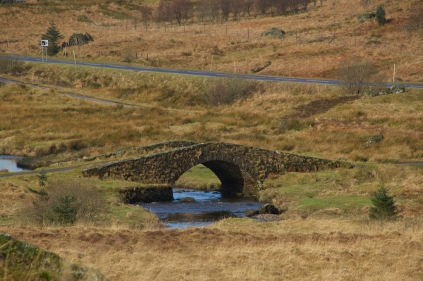 Butter bridge (3)