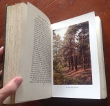 'Trees and How They Grow' book (6)