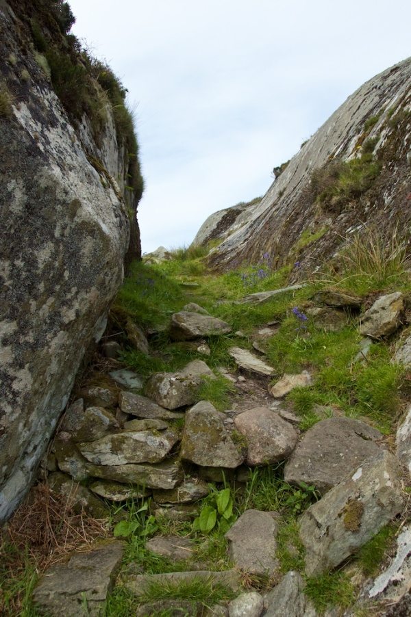 Dunadd - path to top