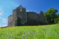 Dunstaffnage Castle (3)