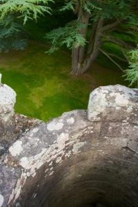 Dryburgh stairs (3)