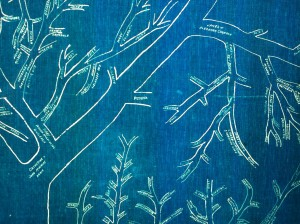 A small section of Terry and Jean's extensive family tree - an heirloom in itself, drawn on blue canvas over 100 years ago