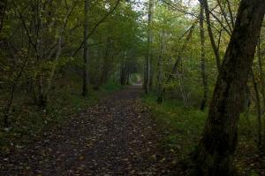 Killiecrankie autumn (28)