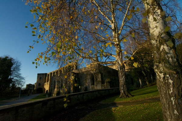 Dunfermline Abbey (4)
