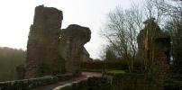 Rosslyn Castle Crop