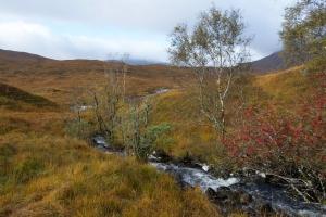 autumn-kinlochhourn-3