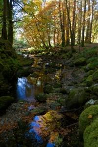 loch-creran-cwa-18