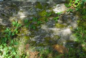 stone-castle-lachlan